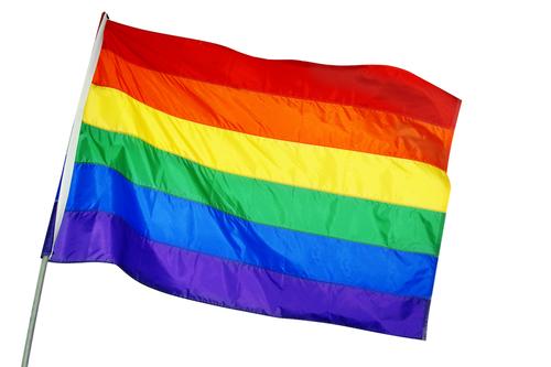 homovlag